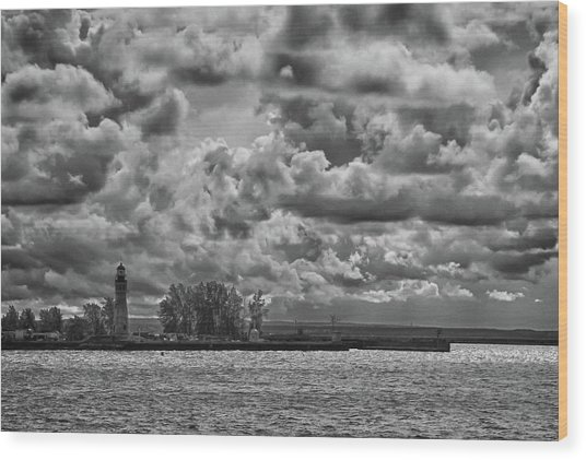 Buffalo Lighthouse 8111 Wood Print