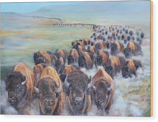 Buffalo Stampede Wood Print