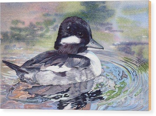 Bufflehead Duck Wood Print by Lorraine Watry