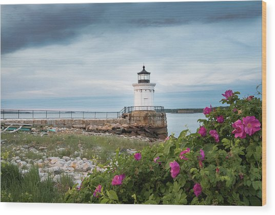 Bug Light Blooms Wood Print