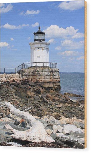 Bug Lighthouse Wood Print