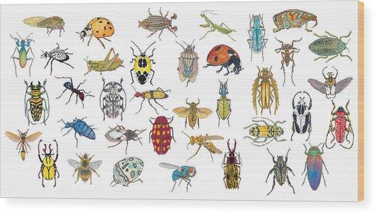 Bugs Wood Print