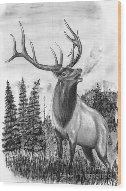 Bull Elk Issuing Challenge Wood Print by Russ  Smith