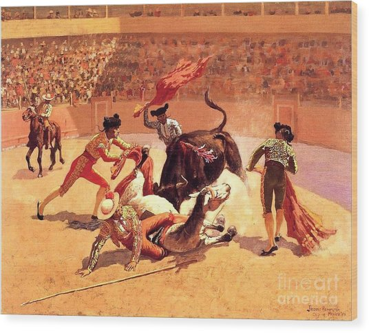 Bull Fight In Mexico Wood Print