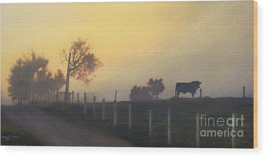 Bull In The Fog Wood Print