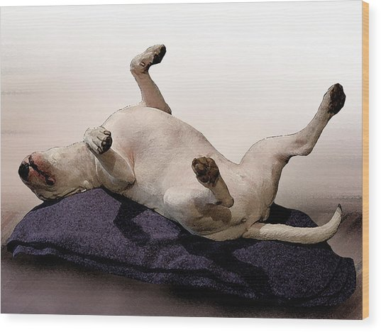 Bull Terrier Dreams Wood Print