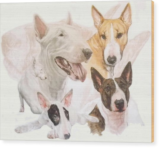 Wood Print featuring the mixed media Bull Terrier Medley by Barbara Keith