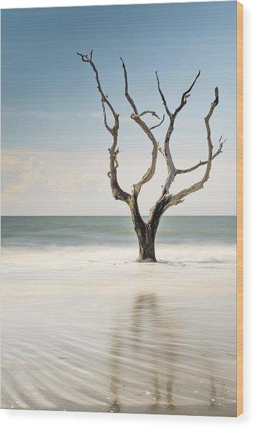 Bulls Island C-xii Wood Print