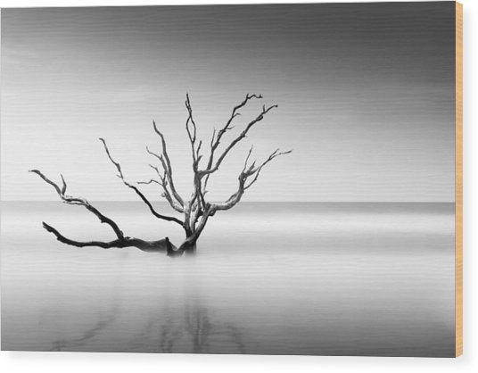 Boneyard Beach Vi Wood Print