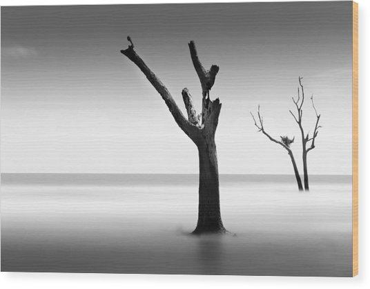 Bulls Island Vii Wood Print