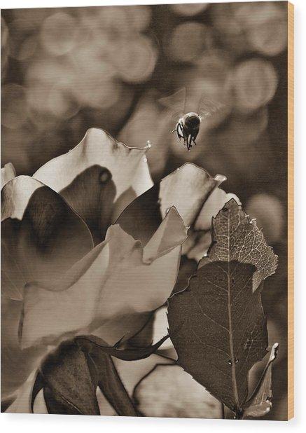 Bumble Wood Print by Monroe Snook
