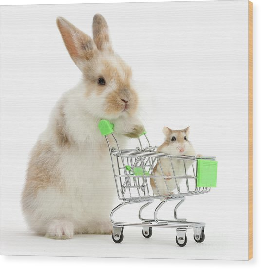 Bunny Shopping Wood Print