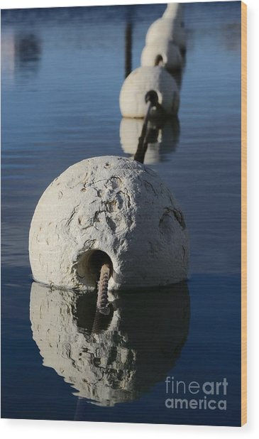 Wood Print featuring the photograph Buoy In Detail by Stephen Mitchell