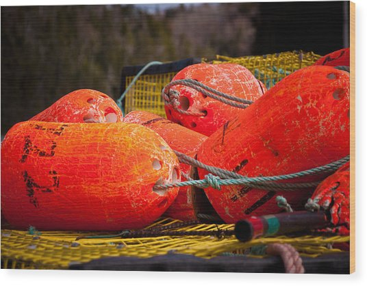 Buoys Wood Print by Gregory Bland