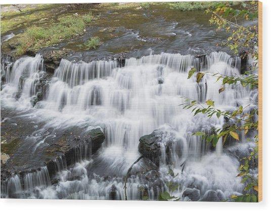 Burgess Falls Middle Wood Print