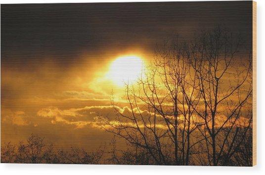 Burnaby Mountain Wood Print