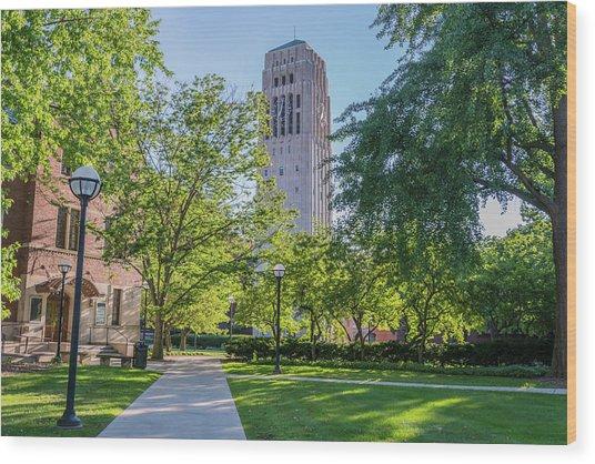 Burton Memorial Tower 1 University Of Michigan  Wood Print