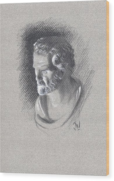 Bust 472 Wood Print by Joe Winkler