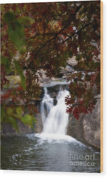 Butcher Falls In Autumn Colors Wood Print