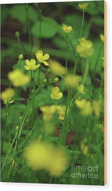 Buttercup Grouping- Vertical- Butler Creek Trail Wood Print