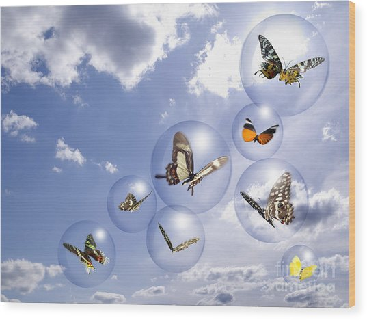 Butterflies And Bubbles Wood Print