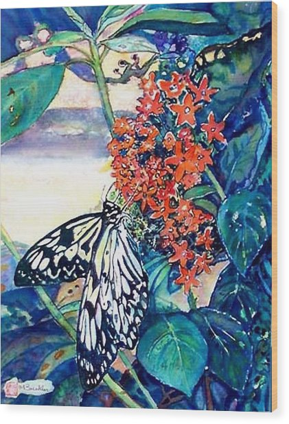 Butterfly At Mac Wood Print by Norma Boeckler