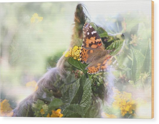 Butterfly Dog Wood Print