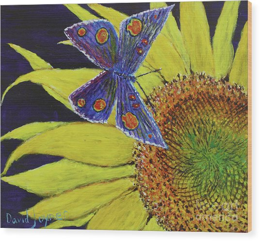 Butterfly Haven Wood Print
