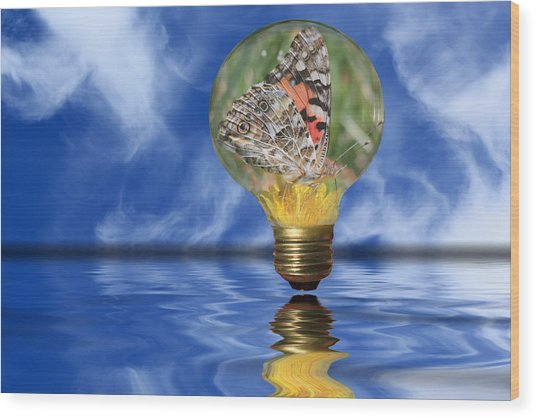 Butterfly In Lightbulb - Landscape Wood Print