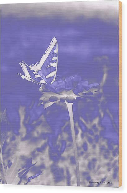 Butterfly In The Mist Wood Print