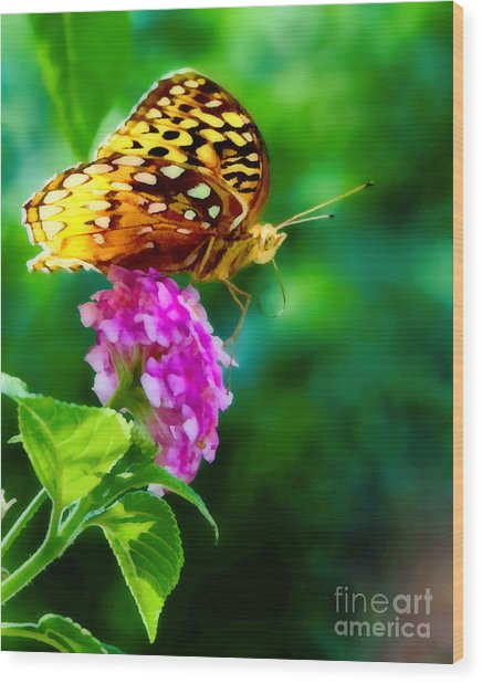 Butterfly Landing Wood Print