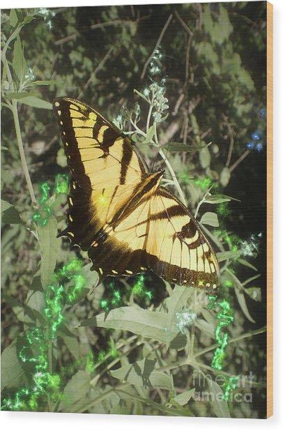 Butterfly Magic Wood Print