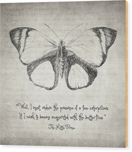 Butterfly Quote - The Little Prince Wood Print