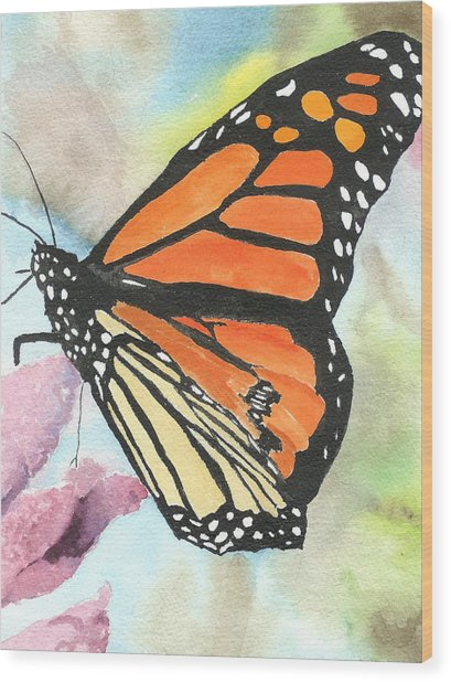 Butterfly Wood Print by Robert Thomaston