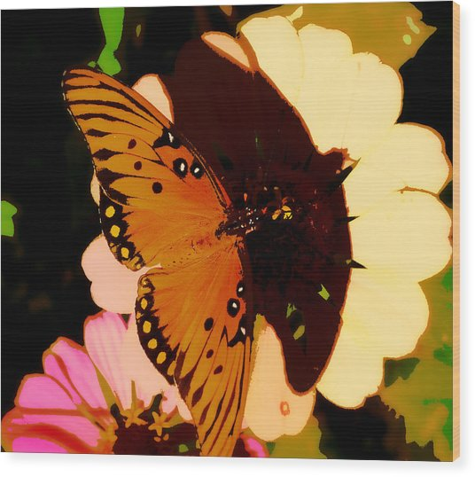 Butterfly Shadows Wood Print by Dottie Dees