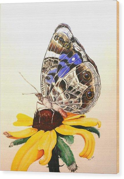 Butterfly Sun Wood Print