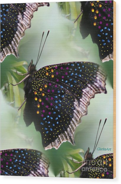 Butterfly Sunbath #2 Wood Print