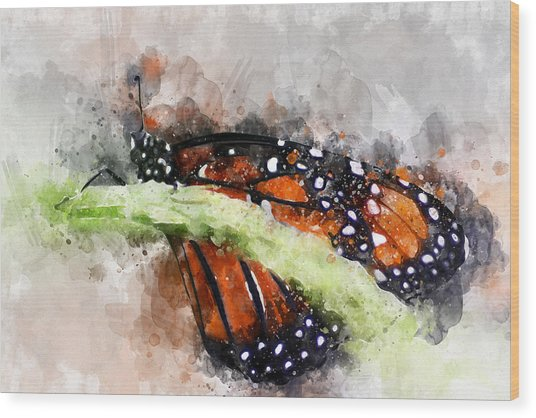 Butterfly Watercolor Wood Print
