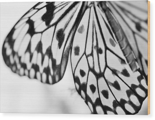 Butterfly Wings 3 - Black And White Wood Print