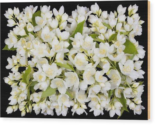 Buttonhole From White  Jasmine Flowers Wood Print by Aleksandr Volkov