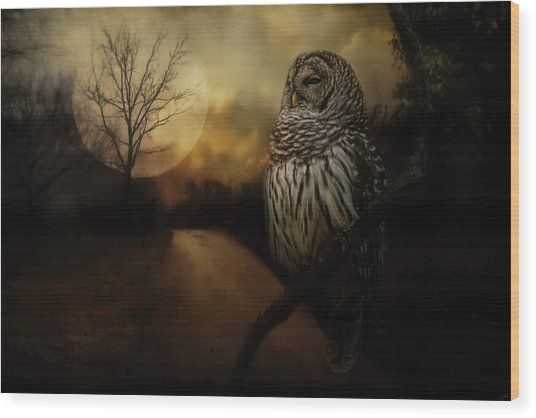 By The Light Of The Full Moon Owl Art Wood Print