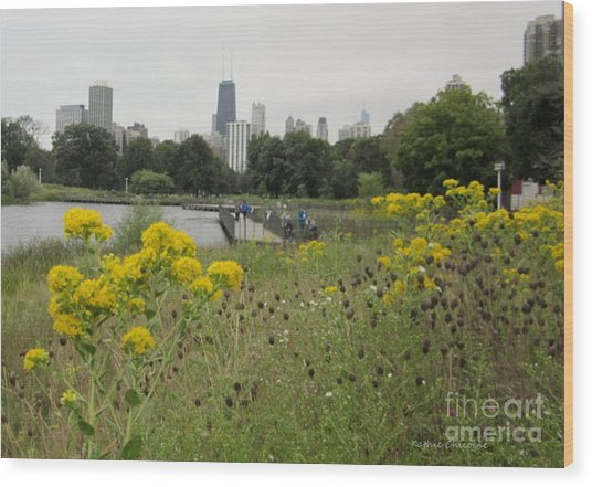 By The Lincoln Park Pond Wood Print