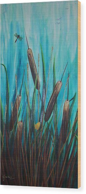 By The Shore Cat -tail Wood Print by Yvonne Kinney