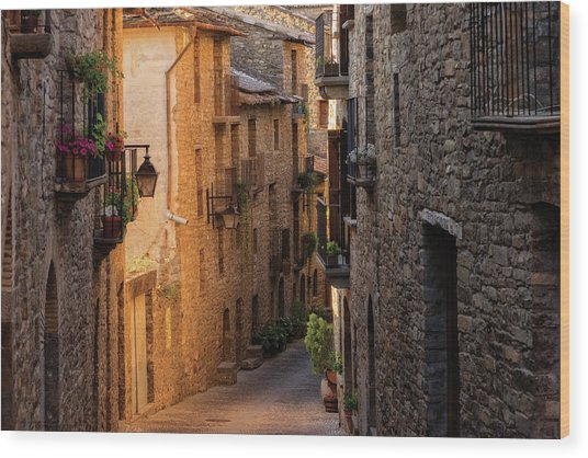 By The Town Of Ainsa In The Province Of Huesca Wood Print