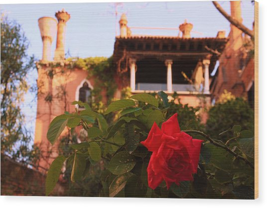 Ca' Dario In Venice With Rose Wood Print by Michael Henderson
