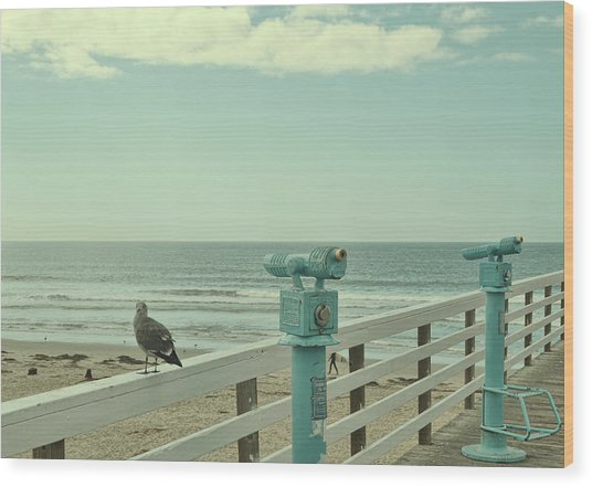 Ca Peepers Wood Print by JAMART Photography