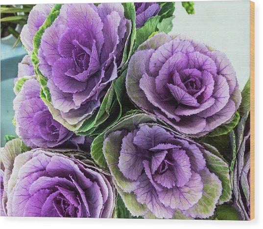 Cabbage Flower Wood Print