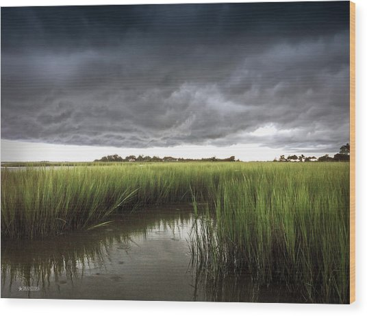 Cabbage Inlet Cold Front Wood Print