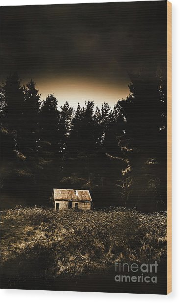 Cabin In The Woodlands  Wood Print