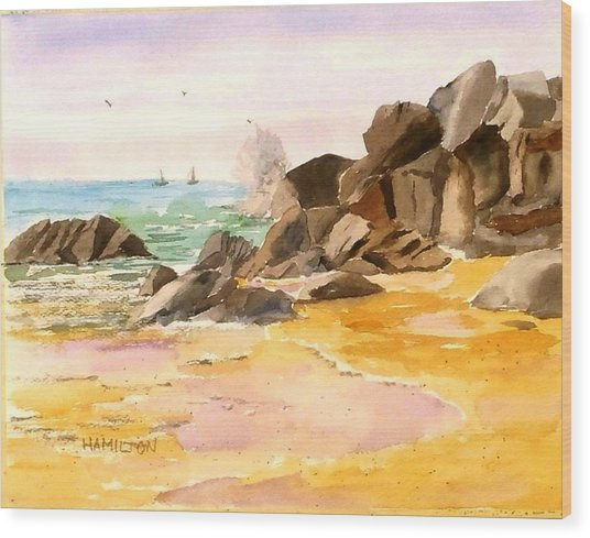 Cabo San Lucas Wood Print